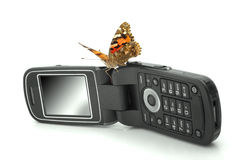 Butterfly sitting on a mobile phone Royalty Free Stock Photography