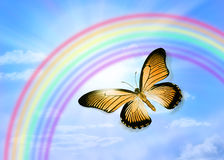 Butterfly Sky Rainbow. A butterfly with a rainbow sky Stock Photos