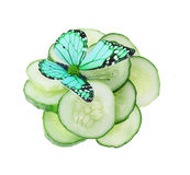 Butterfly on sliced cucumber isolated on white Royalty Free Stock Image