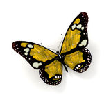 butterfly solar yellow Royaltyfri Bild