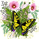 Butterfly and spring flowers Stock Photo