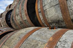 Butterfly on stacked pile of old wooden barrels and casks at whisky distillery in Scotland.  stock photo