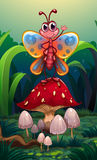 A butterfly standing above the big red mushroom Stock Images