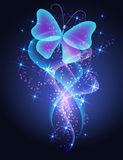 Butterfly and stars Royalty Free Stock Image