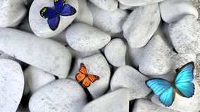 Butterfly and stones as background. stock illustration