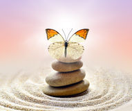 Butterfly and stones balance Stock Images