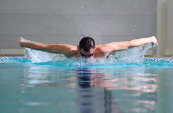 Butterfly stroke Royalty Free Stock Images