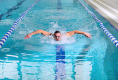 Butterfly stroke. Man swims using the butterfly stroke in indoor pool Stock Photos