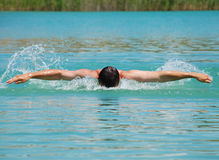 Butterfly stroke Royalty Free Stock Image