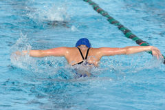 Butterfly Stroke. A swimmer does the butterfly stroke in a race Stock Photography