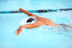 Butterfly Stroke Royalty Free Stock Photo