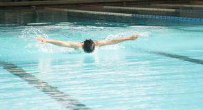 Butterfly stroke swimming Stock Image