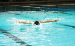 Butterfly stroke swimming Stock Images