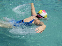 Butterfly stroke upwards Stock Photography