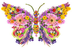 Butterfly from summer flowers. Butterfly  abstract collage made from fresh summer flowers. Isolated Stock Photo