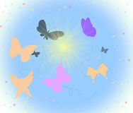 Butterfly and sun. Many colors butterfly and sun Stock Images