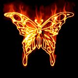 Butterfly surrounded by fire. On a black background Stock Images