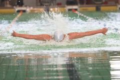 Butterfly swim. Swimmer face down doing butterfly stroke at swim event Stock Images