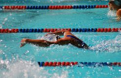 Butterfly Swimmer Royalty Free Stock Photo