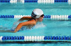 Butterfly Swimmer. Butterfly event at swim meet Royalty Free Stock Photo