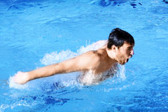 Butterfly swimmer in pool Royalty Free Stock Photography