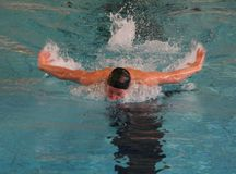 Butterfly Swimming. A man swimming butterfly style Stock Image