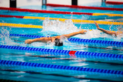 Butterfly swimming race Royalty Free Stock Image
