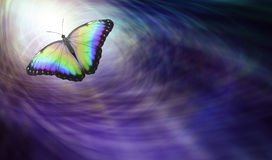 Butterfly Symbolising Spiritual Release. Beautiful multicoloured butterfly moving into the light depicting a departing soul Stock Photo
