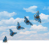 Butterfly takeoff. Several positions of butterfly takeoff in sky Stock Images