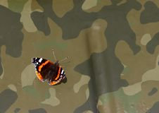 Butterfly on a tank Royalty Free Stock Photos