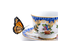 Butterfly on a tea cup. Isolated on white (postcard stock photography