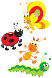Butterfly, termite, ladybug and caterpillar. The  clip-arts of the colorful insects drawn in the children's style: butterfly, termite, ladybug and caterpillar Royalty Free Stock Image