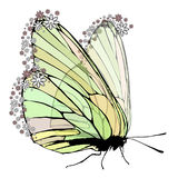 Butterfly with transparent wings. On a white background. On the wings of pollen in the form of flowers. Vector illustration for your design Royalty Free Stock Photo