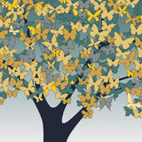 Butterfly tree Royalty Free Stock Photo