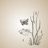 Butterfly and tree sprout in the rain. Engraving style retro vintage vector lineart illustration. Eps-8. Stock Photos