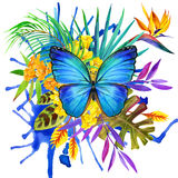 Butterfly, tropical leaves and exotic flower