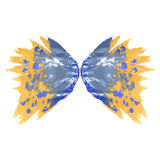 Butterfly two wings. Royalty Free Stock Photo
