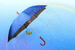 Butterfly under umbrella in rainy weather. Background rainbows stock image