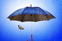 Butterfly under umbrella in rainy weather. On background sky royalty free stock photos
