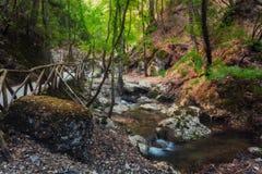 Butterfly Valley en naturreserv Rhodes ö Grekland royaltyfria bilder