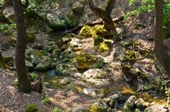 Butterfly Valley famoso su Rodi, Grecia Fotografia Stock Libera da Diritti