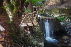 Butterfly Valley, una reserva de naturaleza Isla de Rodas Grecia Imágenes de archivo libres de regalías