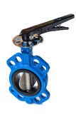 Butterfly valve Royalty Free Stock Image