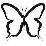 Butterfly (vector) Royalty Free Stock Image