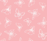 Butterfly. Vector drawing Stock Photos