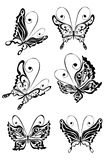 Butterfly, vector illustration Stock Photo