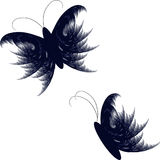 Butterfly vector illustration. Feather like vector butterfly illustration isolated on a white background Stock Images