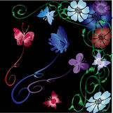 Butterfly vector illustration. Vector butterfly, flowers and vines illustration on a black background Stock Photography