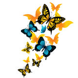 The butterfly. Vector illustration Stock Photo