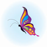 Butterfly vector Royalty Free Stock Photos